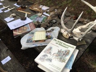wildlife-station_envirothon-2016